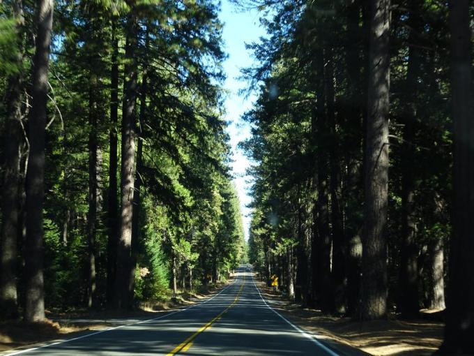 RoadTrip24